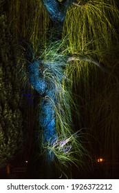 Nachtaufnahme eines Lichtereignisses mit farbenfrohen Farben