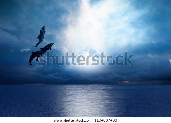 """Night sky with full moon in the clouds   - Group of dolphins jumping out of the water  """"Elements of this image furnished by NASA"""
