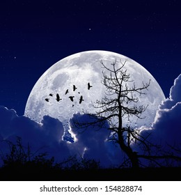 Night sky with full moon, stars, flock of flying ravens, crows, old tree. Elements of this image furnished by NASA