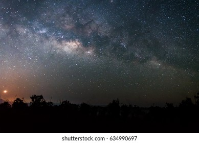 Night sky landscape of The Milky way above  forest.