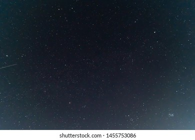 Night sky low light photo. A lot of stars and constellations on dark sky. The branches near sides of photo. Far away from city and no clouds.