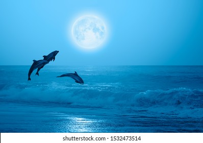 """Night sky with new moon in the clouds - Group of dolphins jumping out of the water """"Elements of this image furnished by NASA"""