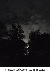 night sky silhouette with trees full moon and clouds