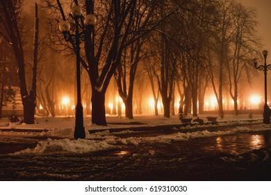 Night Snow Park