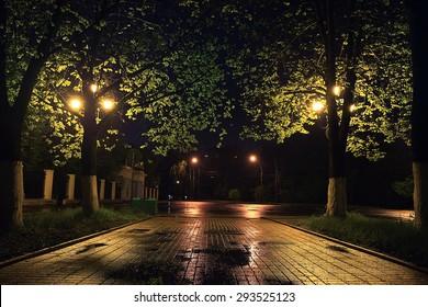 Night southern summer landscape