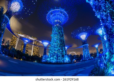 Night time in Garden by The Bay , Singapore January 30 , 2015
