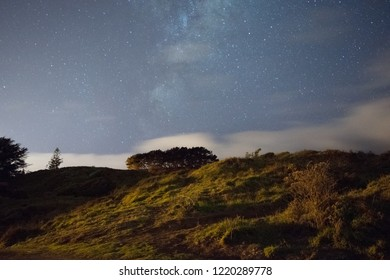 Night time in park with trees on hill and milky way galaxy rising