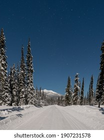 Night time shot of a winter road in northern Canada surrounded by spruce trees wilderness, beautiful starry blue sky.