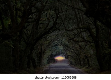 Night time. A spooky view of the sun setting at the end of a wooded dirt road