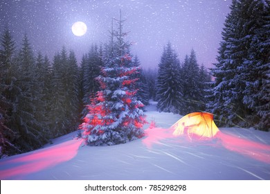 Christmas Lights For Camping.Christmas Camping Images Stock Photos Vectors Shutterstock