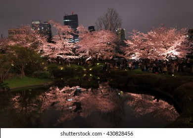 Night view of cherry blossoming and its reflection on a pond. Photoed at Roppongi hills, Tokyo, Japan.