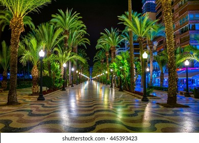 Night view of illuminated promenade in spanish city Alicante, which is stretched alongside the mediterranean sea.