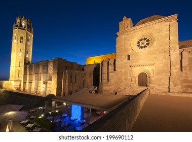 Night View of the LLeida Cathedral.Catalonia.Spain