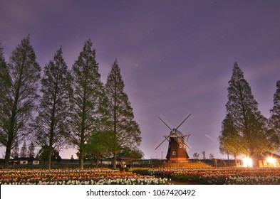 Night view in the spring, Akebono mountain agricultural park tulip field and windmill, Kashiwa City, Chiba Prefecture, Japan.