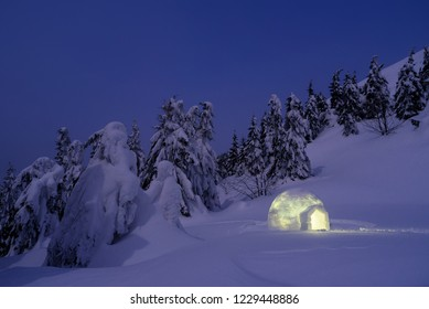 Night winter landscape with igloo. Wonderful scenery with snowdrifts and trees in the snow