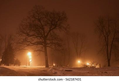 Night Winter Park in the fog. lights along the avenue. autumn mistÃ??