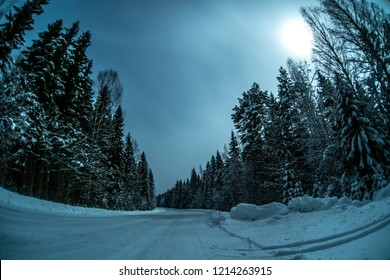 Night winter road in forest