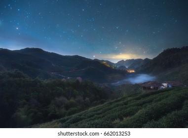 Nightscape at Tea plantation in the Doi Ang Khang, Chiang Mai, Thailand