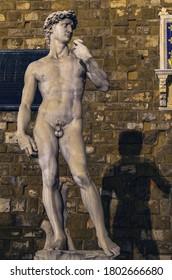 Retrato nocturno de la escultura David y la sombra en la plaza de la ciudad de Florencia