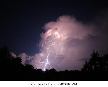 Nighttime lightning bolts in Florida