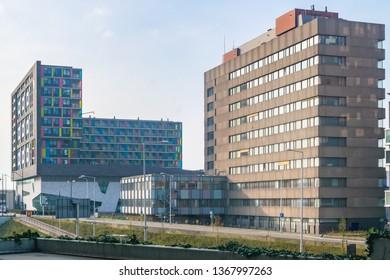 NIJMEGEN, THE NETHERLANDS, APRIL 6 2019, DOORNROOSJE IN NIJMEGEN