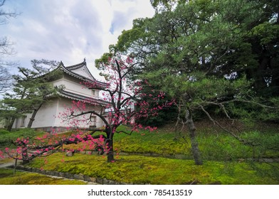 Nijo Castle in Kyoto , Japan. It is one of the seventeen Historic Monuments of Ancient Kyoto.
