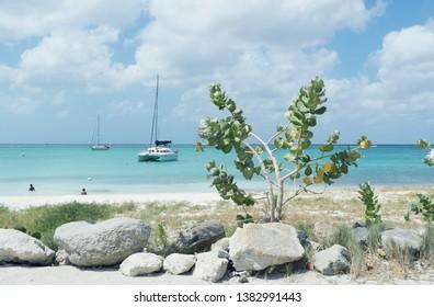 Nikki's beach Aruba Oranjestad Dutch Caribbean