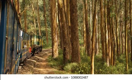 Nilgiri Mountain Railway Ooty toy train in India.