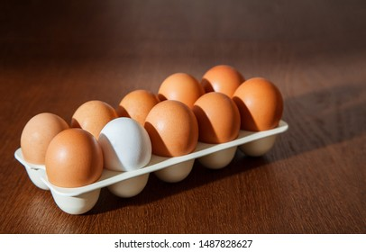 nine brown eggs and one white egg in a plastic tray on the table. concept. i am different from others