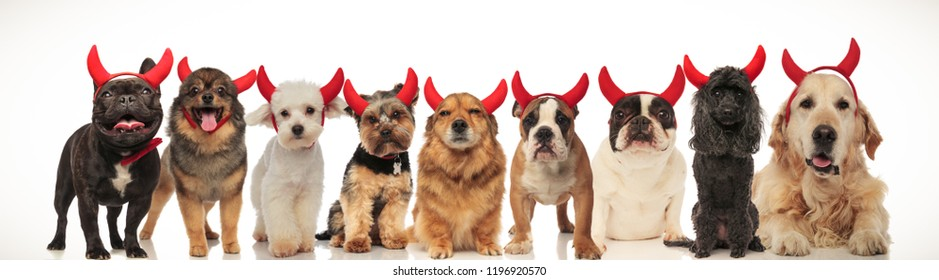 nine cute little devils panting together on white background