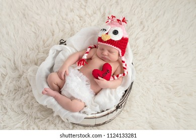 "A nine day old, newborn baby girl wearing a pink and red owl hat and holding a heart shaped pillow with the word, ""Love"" written on it."