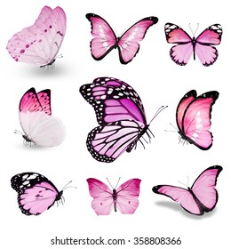Nine pink butterflies on white background