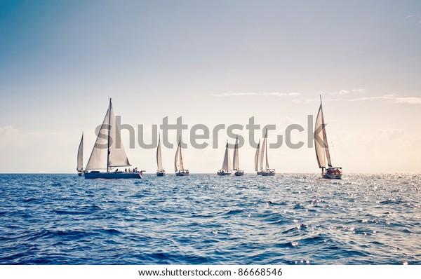 Neun Segelyachten mit weißen Segel in Reihe