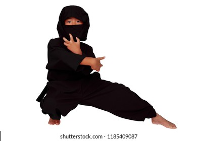 A ninja taking fighting poses