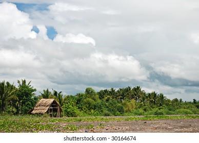 Nipa Hut on Beach Shoreline
