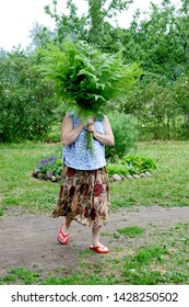 Nitaure, Latvia - june 23, 2009: Woman holds big bouquet with green ferns in her hands, celebration of the midsummer holidays (Ligo) in Latvia.
