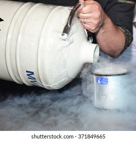 Nitrogen in the kitchen