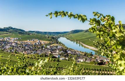 Nittel on the Moselle Rhineland-Palatinate Germany.