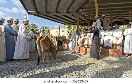 Nizwa, Oman, 24 November 2017: Farmers busy selling their livestocks at the weekly Nizwa Farmers Friday Market