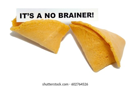 IT'S A NO BRAINER! concept fortune cookie. Isolated.