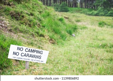 No camping tents caravans sign on tree in woodlands national park travel outdoors forestry management