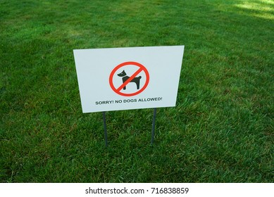 No dog allowed sign in the park