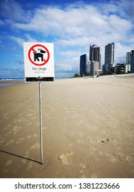 No Dogs Allowed on the beach signage at Surfers Paradise on the Gold Coast, Australia. For health and saftey reasons dogs are not allowed to enter the beach area with penalties applied.