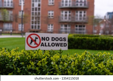 No dogs allowed sign attached to a bush building in the background in a gated area