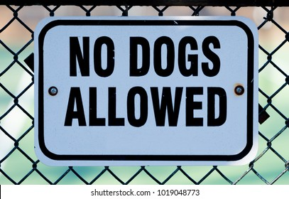 No dogs allowed white sign on a metal fence