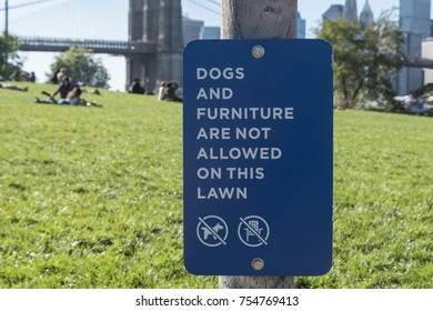 No Dogs and furniture allowed sign in Brooklyn NY