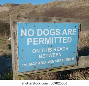 """""""No Dogs are Permitted on this Beach between 1st May and 30th September"""" Sign on the Beach in the Seaside Village of Croyde on the North Coast of Devon, England, UK"""