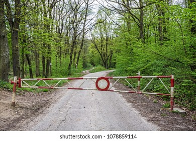 No entry to the forest path. Barrier and green forest.