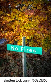 No Fires Sign in foreground of Autumn leaves