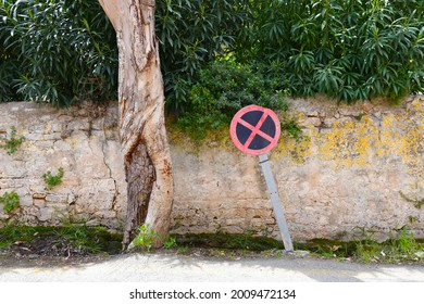 No parking sign next to a tree